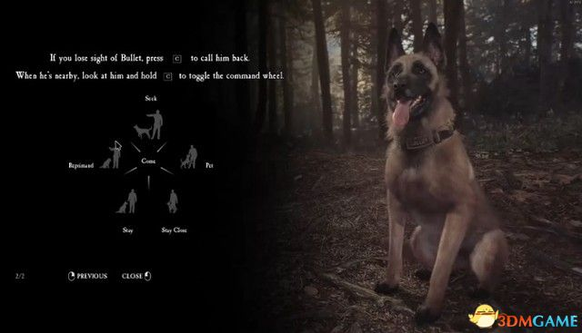 《布莱尔女巫》 图文攻略 通关全剧情流程攻略